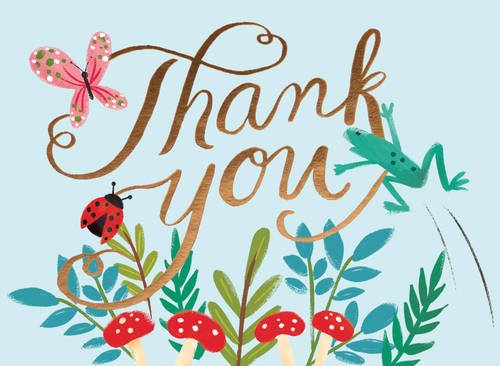 9780735335677: Forest Friends Embellished Thank You Notes