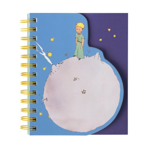 9780735339255: The Little Prince: layered journal