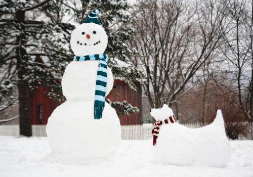 9780735341302: Snowman & Snow Dog Boxed Holiday Half Notecards (Christmas Half Note Box Notecard)