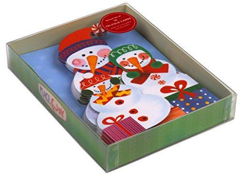 9780735343375: Snowfamily Tri-fold Notecards