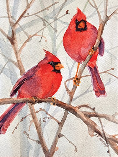 9780735344228: Cardinal Brothers Boxed Holiday Full Notecards