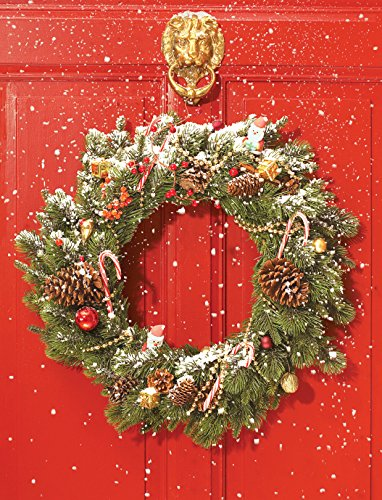 9780735344365: Red Door Wreath Embellished Holiday Notecards