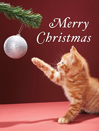 9780735344457: Christmas Kitty Boxed Holiday Full Notecards