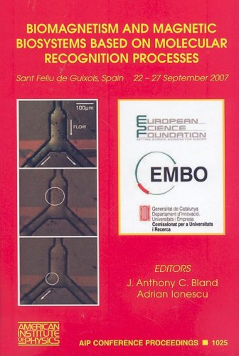 9780735405479: Biomagnetism and Magnetic Biosystems Based on Molecular Recognition Processes (AIP Conference Proceedings)