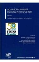 9780735409989: Advanced Summer School in Physics 2011: EAV2011 (AIP Conference Proceedings)