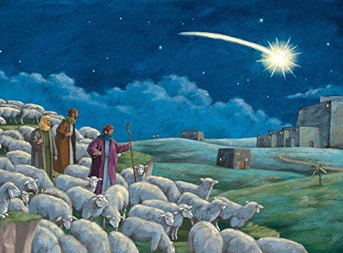 9780735840201: A Star in the East Advent Calendar