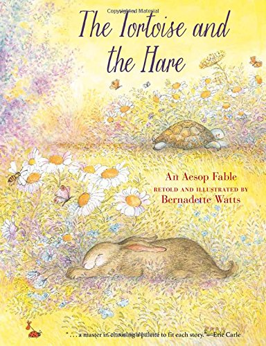 9780735842076: The Tortoise and the Hare