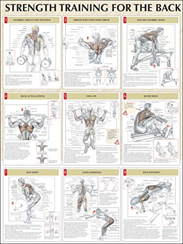 9780736059329: Strength Training for the Back Poster