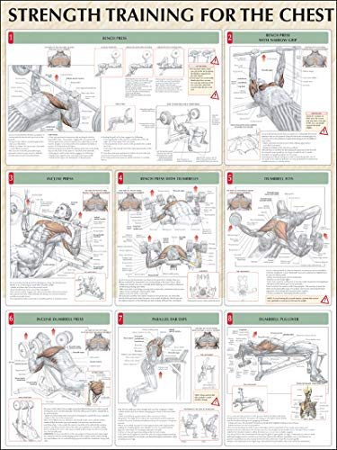 9780736059350: Strength Training for the Chest Poster