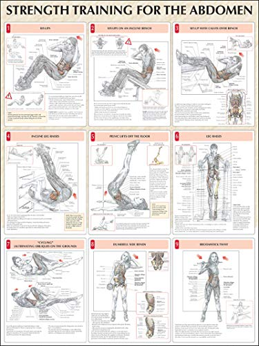 9780736059367: Strength Training for the Abdomen Poster