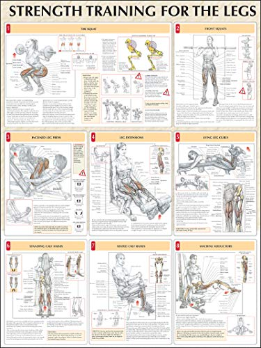 Strength Training Anatomy: Strength Training for the Legs Poster by ...
