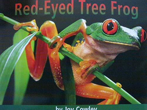 9780736219228: Red-Eyed Tree Frog