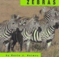 Zebras (Animals): Kevin J. Holmes