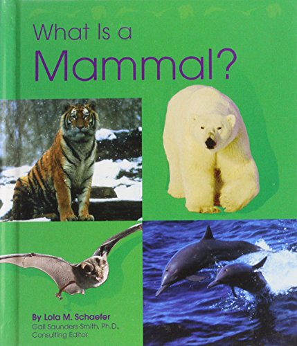 What Is a Fish? (The Animal Kingdom) (0736808655) by Lola M. Schaefer
