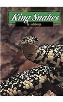 9780736809085: King Snakes