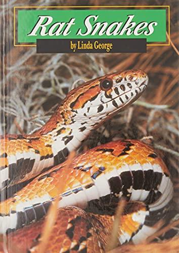 9780736809092: Rat Snakes