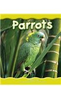 9780736811941: Parrots (Rain Forest Animals)