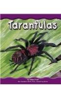 Tarantulas (Rain Forest Animals): Frost, Helen