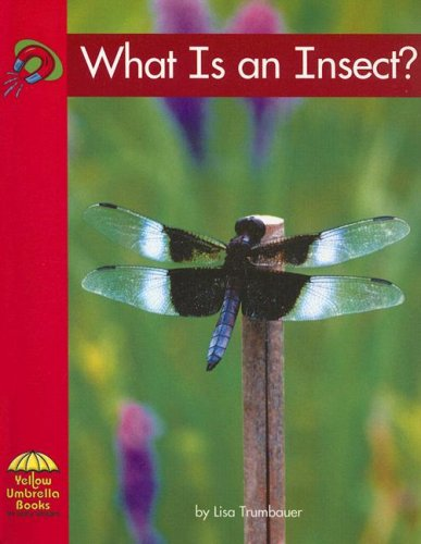 9780736817080: What Is an Insect? (Yellow Umbrella Emergent Level)
