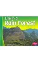Life in a Rain Forest (Living in a Biome): Lindeen, Carol K.