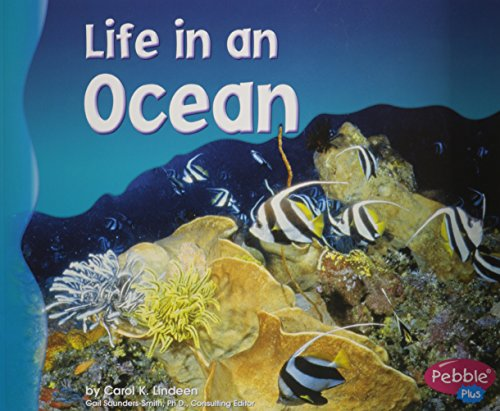 9780736834063: Life in an Ocean (Living in a Biome)