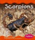 9780736836371: Scorpions (Desert Animals)