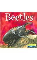 9780736837064: Beetles (World of Insects)