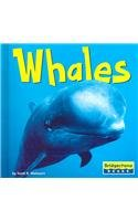 9780736837217: Whales (World of Mammals)