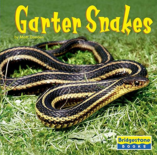 9780736837323: Garter Snakes (World of Reptiles)