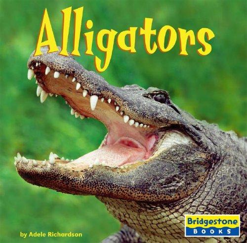 9780736843263: Alligators (World of Reptiles)