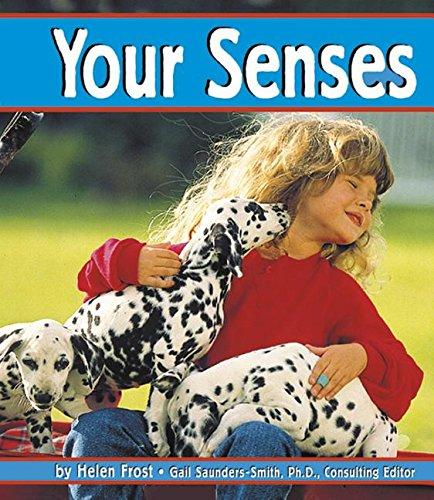 9780736848695: Your Senses (The Senses)