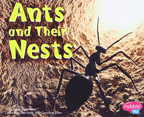 9780736851206: Ants and Their Nests (Animal Homes)