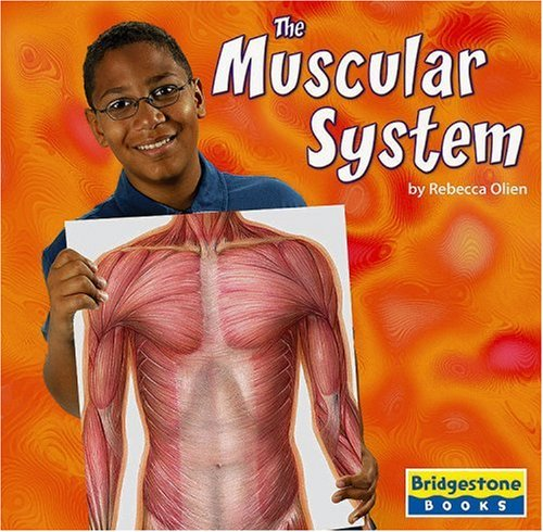 9780736854115: the muscular system (human body systems) - abebooks, Muscles