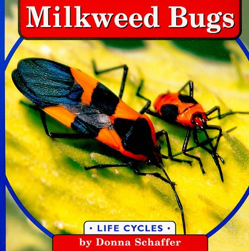 9780736856997: Milkweed Bugs (Life Cycles)