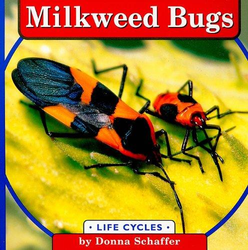 9780736856997: Milkweed Bugs (Life Cycles)