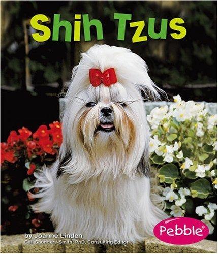 Shih Tzus (Dogs): Linden, Joanne