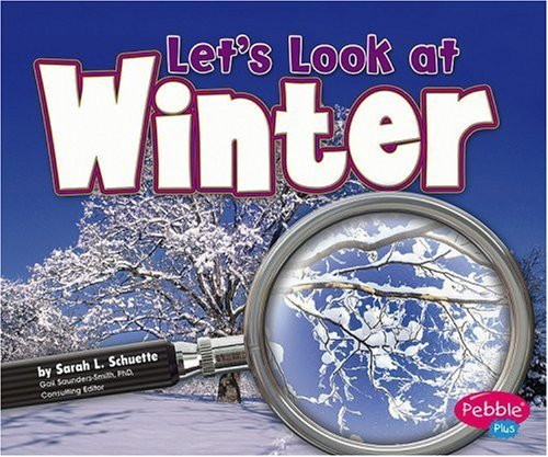9780736867061: Let's Look at Winter (Investigate the Seasons)