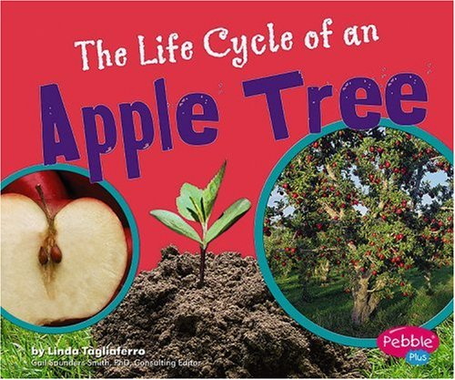 9780736867092: The Life Cycle of an Apple Tree (Plant Life Cycles)