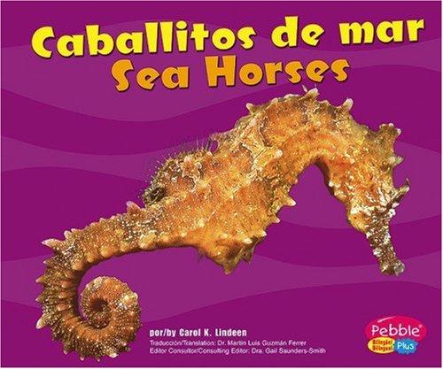 9780736876476: Caballitos de Mar/Sea Horses (Pebble Plus Bilingual)
