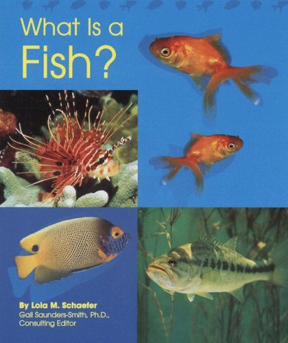 What Is a Fish? (The Animal Kingdom): Schaefer, Lola M.