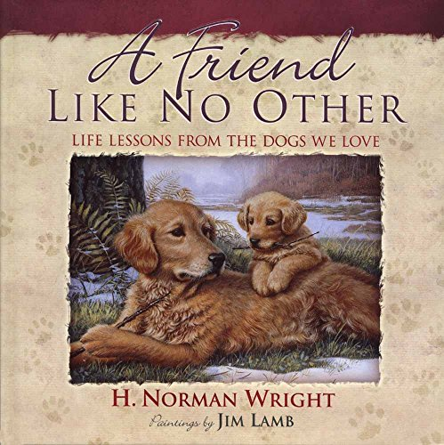 A Friend Like No Other: Life Lessons: H. Norman Wright,