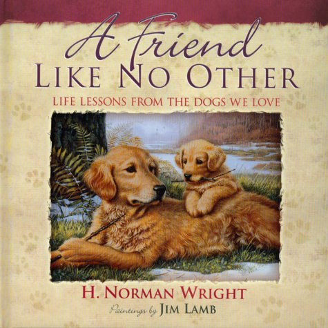 A Friend Like No Other: Life Lessons: Wright, H. Norman