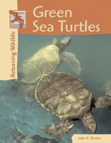 9780737718317: Returning Wildlife - Green Sea Turtles