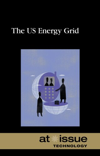 9780737756029: The U.S. Energy Grid (At Issue)