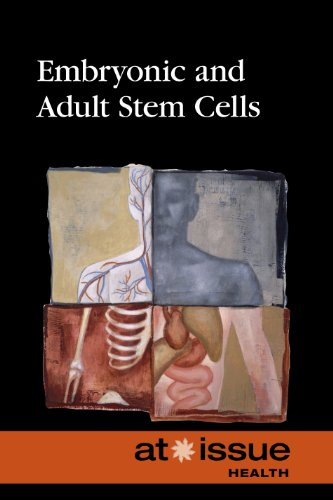9780737761740: Embryonic and Adult Stem Cells (At Issue)