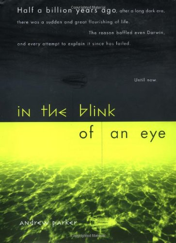 9780738206073: In The Blink Of An Eye