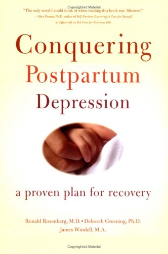 9780738208411: Conquering Postpartum Depression: A Proven Plan For Recovery