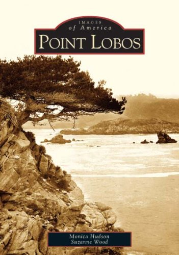 9780738529288: Point Lobos (CA) (Images of America)