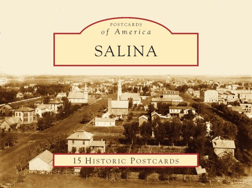 Salina: 1858-2008: Salina History Book Committee