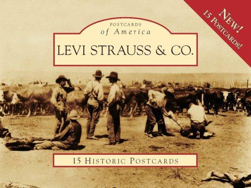 Levi Strauss Co.: Lynn Downey